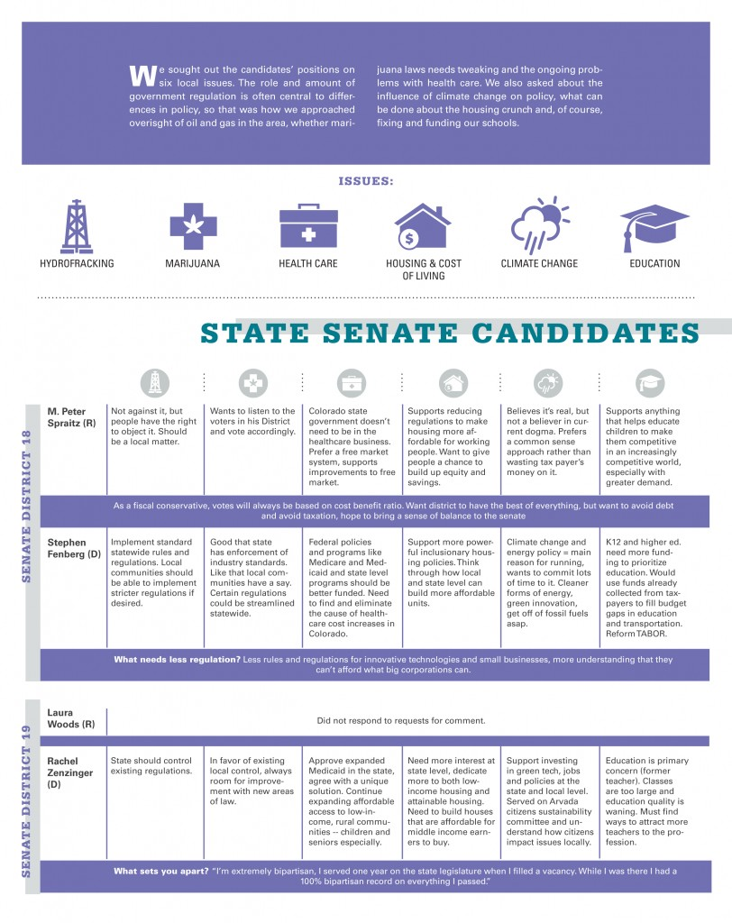 Listing of positions from four state senate candidates