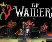 Spotlight on Josh Barrett of The Wailers