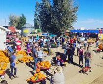 Crisis in Rural America: Farm Exodus