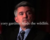 Meet Yeet: The Woman Behind @YeetCoryGardner