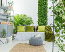 Home Products | Home & Hood