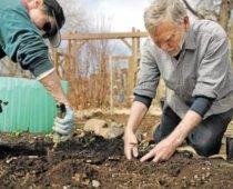 Sustainable Gardening | Home & Hood