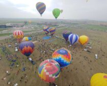 A Sheep, A Duck, and A Rooster Climb Into a Balloon | Summer Sports