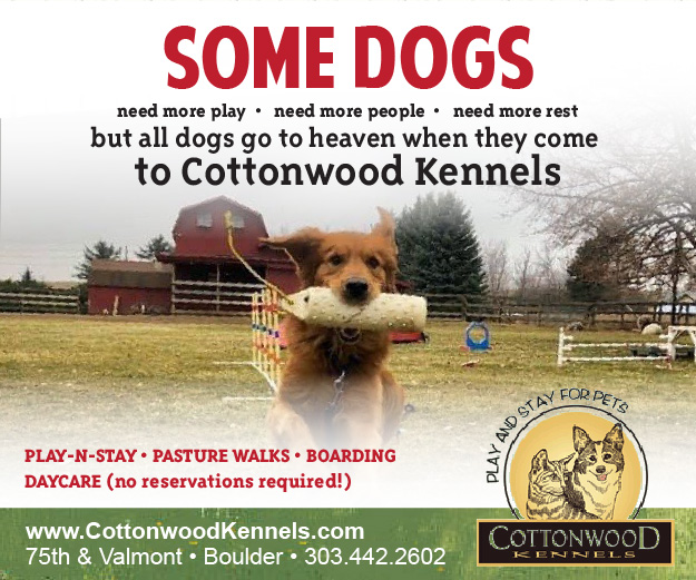 Visit  Cottonwood Kennels